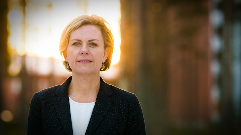 Katarina Areskoug, chef EU kommissionen