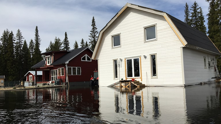 Vårfloden översvämmar Vindelälven och Laisälven i Sorsele kommun.