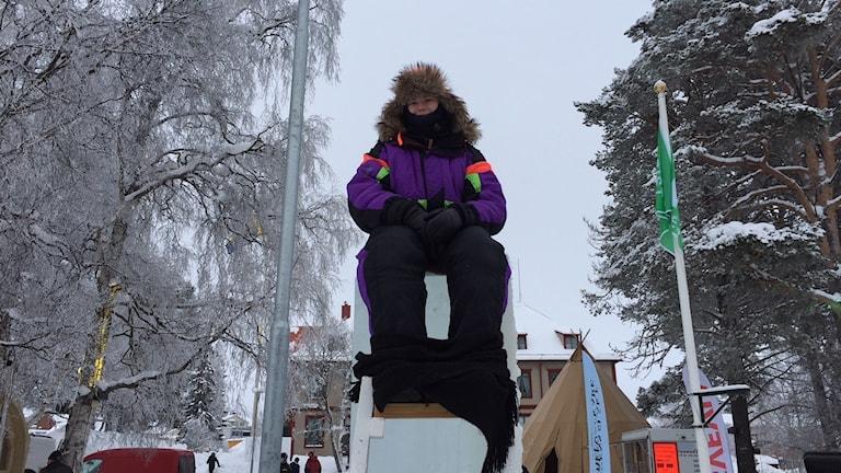 Linn Elmqvist, stolpsittare