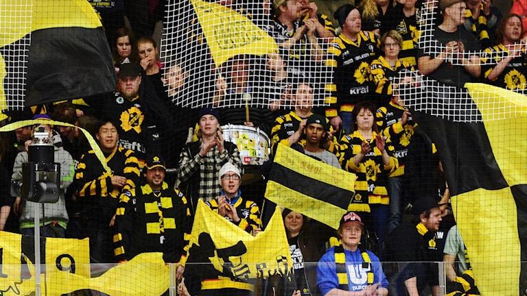 Ståplatspubliken viftar med svart och gult för Skellefteå AIK.