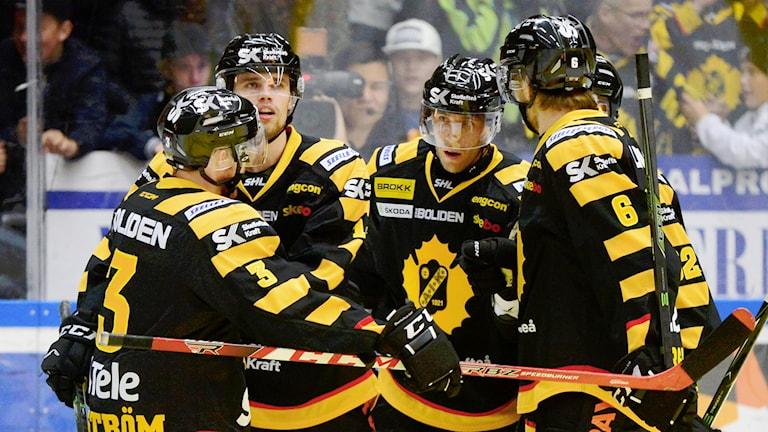 Arkivbild Skellefteå AIK. Foto: Robert Granström/TT.