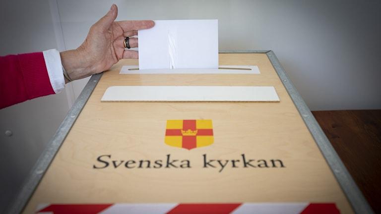 Kuvert med förtidsröster läggs i valurnan i lokalen för förtidsröstning i kyrkovalet 2021.