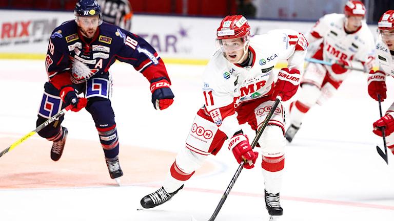Timrås Henrik Törnqvist före Linköpings James Wright under lördagens premiärmatch i SHL mellan Linköping HC och Timrå IK