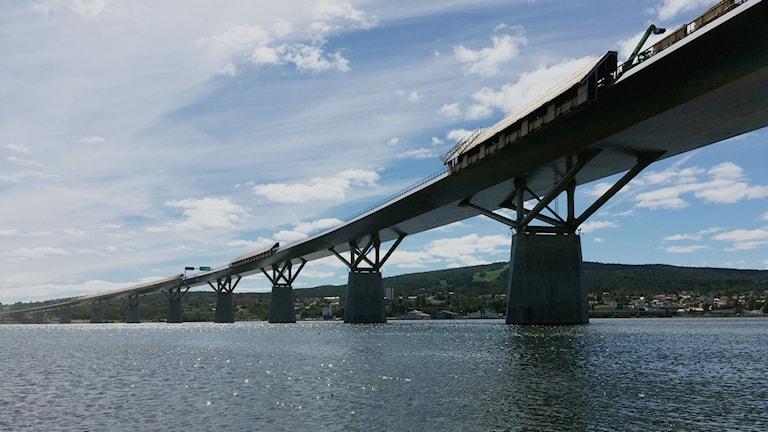 Sundsvallsbron sedd snett nedifrån med pelarna i vatten. Foto: Herman Ling/Sveriges Radio