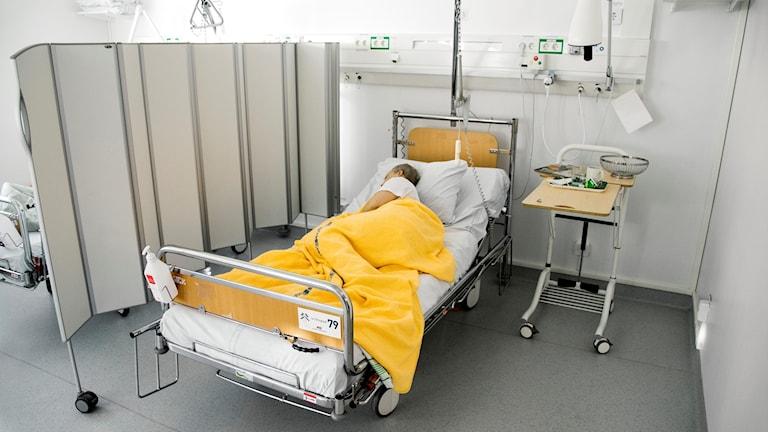 En sjuk kvinna ligger i en säng i ett flerbäddsrum på ett sjukhus  Foto: Claudio Bresciani/TT
