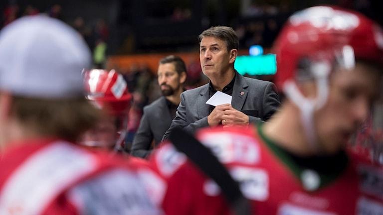 Modos tränare Hans Särkijärvi deppar under ishockeymatch i Hockeyallsvenskan. Foto: Erik Mårtensson/Bildbyrån