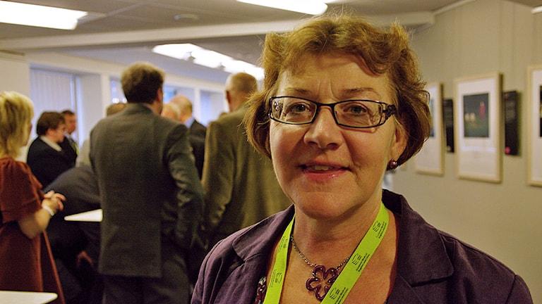Kerstin Brandelius Johansson.