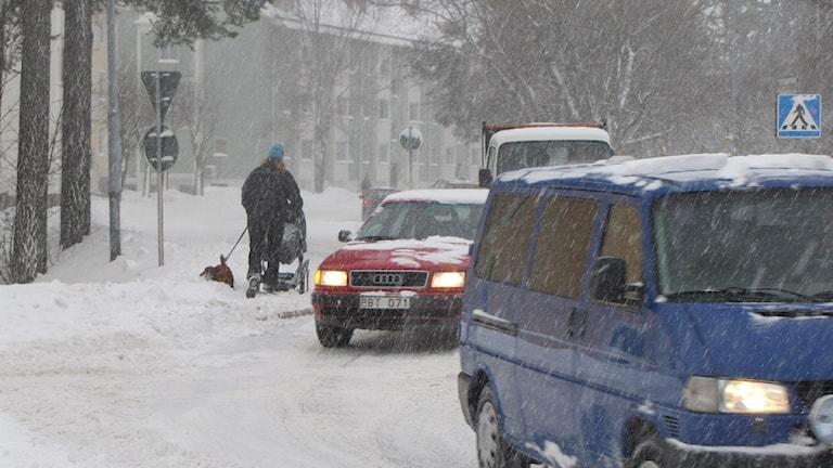 Bild på bilar och en gångtrafikant med barnvagn och hund som försöker ta sig fram i snömängderna. Foto: Karin Lycke