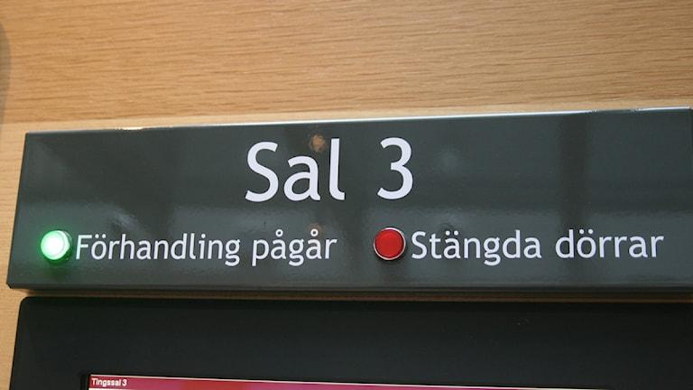 Foto: Ingrid Engstedt Edfast / Sveriges Radio