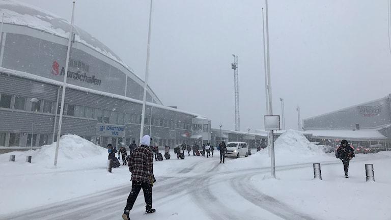 Nordichallen snö