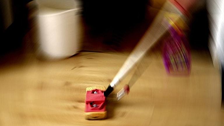 Fler och fler i länet utnyttjar Rut-avdraget för hushållsnära tjänster. Foto: Hasse Holmberg / SCANPIX