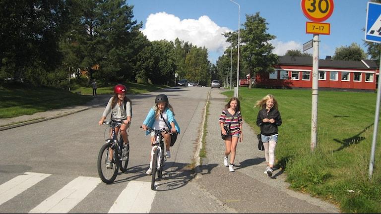 Natasha Hämeenoja,  Alicia Vikström, Beatrice Holm och Wilma Innala på väg hem från Murbergsskolan i Härnösand. Foto Ulla Öhman