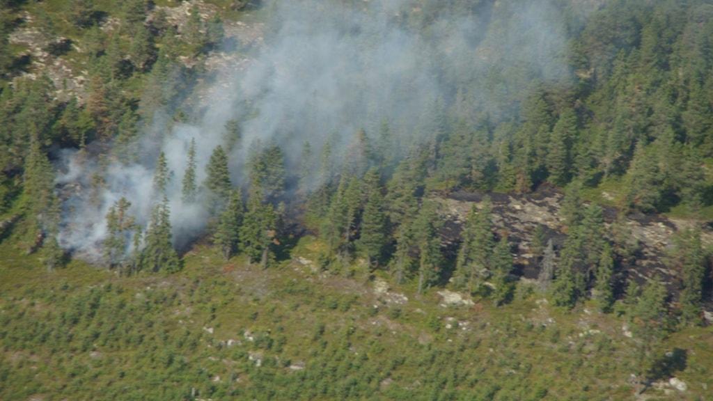 Skogsbrand, flygbild, brandflyg