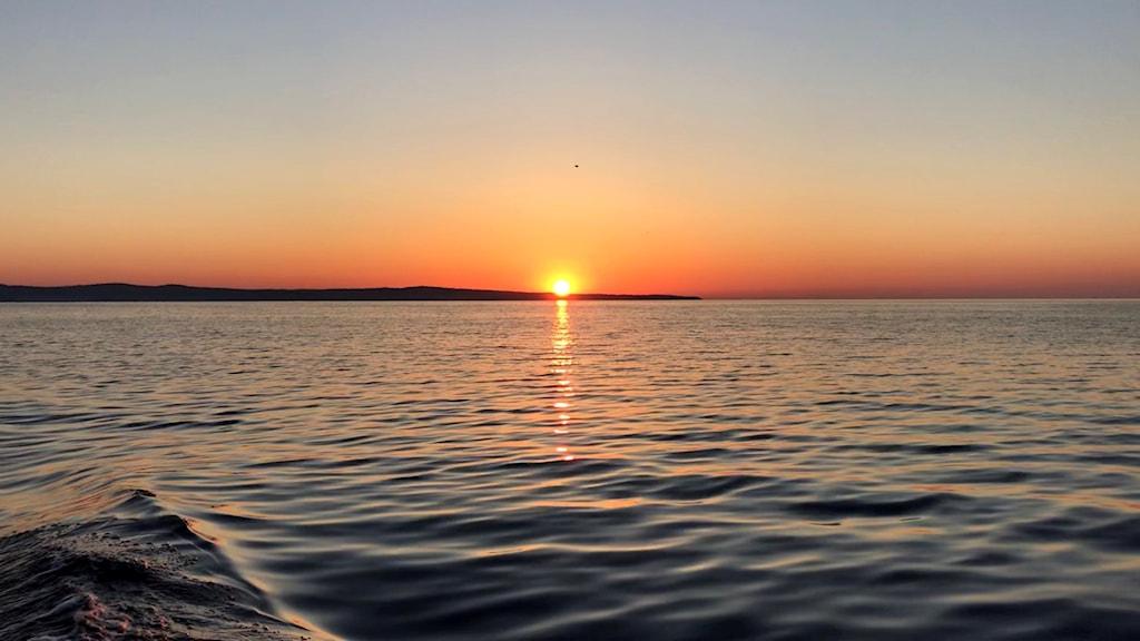 Himlen färgas orange i soluppgången över Sundsvallsbukten. Foto: Fredrik Birging/Sveriges Radio