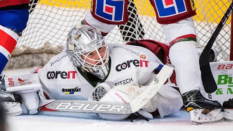 Modos målvakt Erik Hanses under matchen i hockeyallsvenskan mot Oskarshamn. Foto: Suvad Mrkonjic/Bildbyrån
