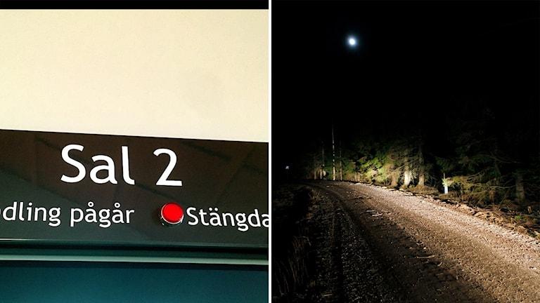 Bildkollage med skylt från hovrätten Sal 2 där rättegången pågår och en bild på den mörka skogsväg i Maj söder om Sundsvall där den mördade 23-åringens kropp hittades. Foto: Sveriges Radio/Mats Andersson/TT