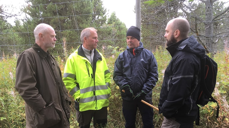 Björn Lyngfelt, SCA, Börje Öberg, kultur och teknik Timrå kommun, Krister Gröning, fritidsfiskare och Marc Liljeström Miljöinspektör, Timrå