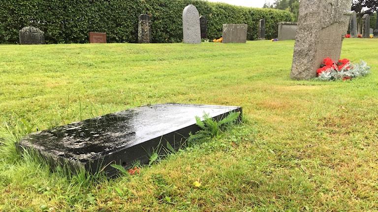 En mörkgrå nedlagd gravsten på Tuna kyrkogård i Matfors. Foto: Alexander Arvidsson/Sveriges Radio