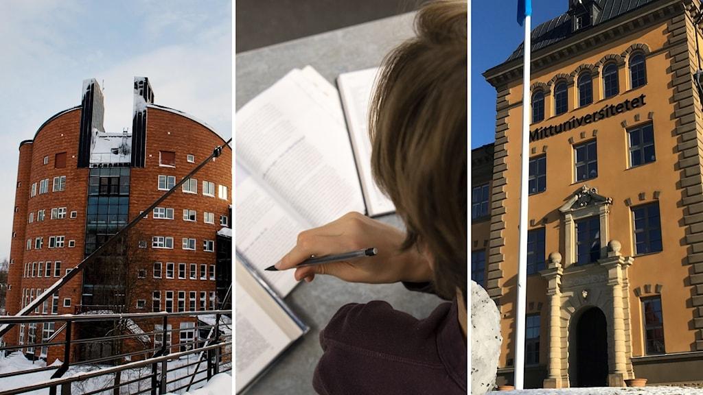 Två universitetsbyggnader och en person som pluggar
