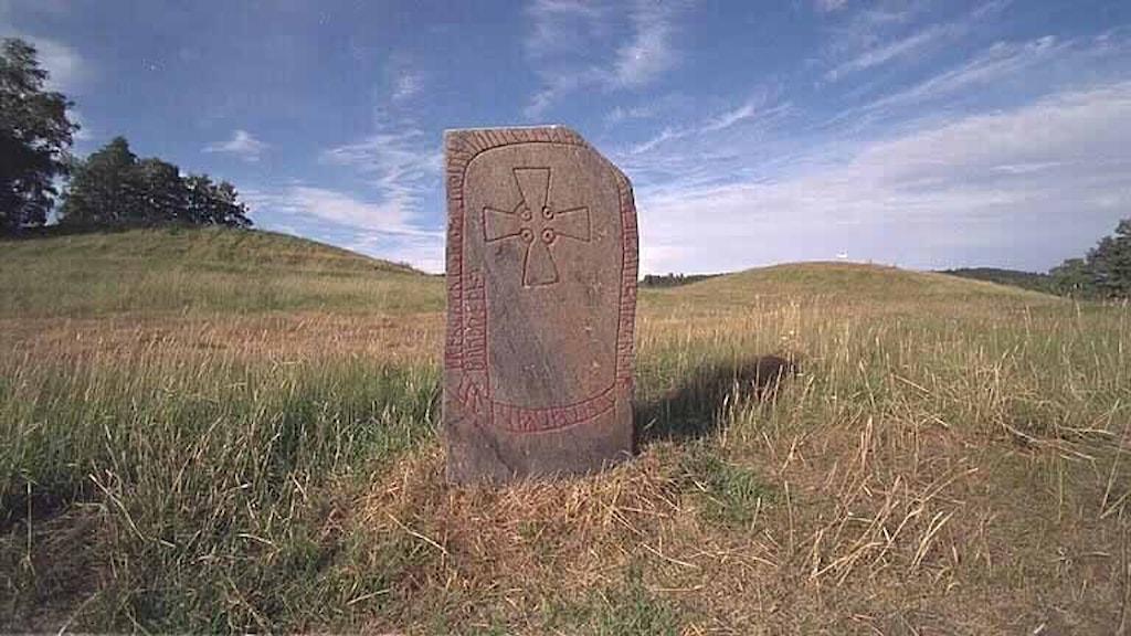 En runsten med rödfärgade runor står i gräset på Högoms kulliga gravfält i Granlo, Sundsvall.