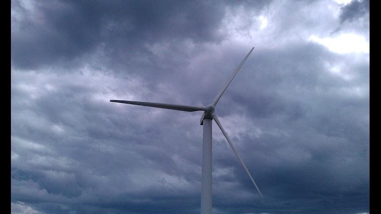vindkraftverk. foto Ulla Öhman