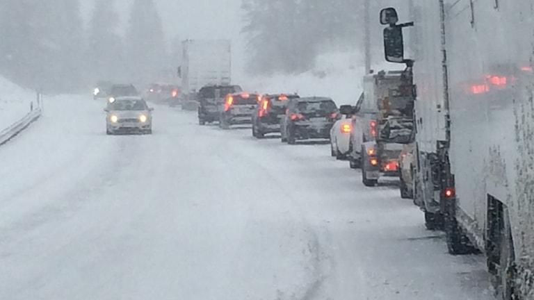 Långa bilköer på E4 efter att långtradare fastnat i snöovädret på E4. Foto: Ove Jönsson/Sveriges Radio