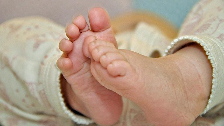 Fötterna på en bebis. Foto: Gustav Sjöholm/TT