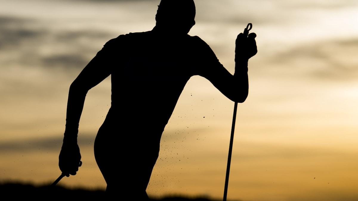 En person som åker längdskidor.