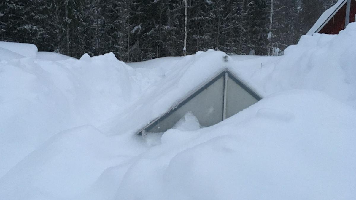 En del av ett växthus, resten är under snön i Storsela.