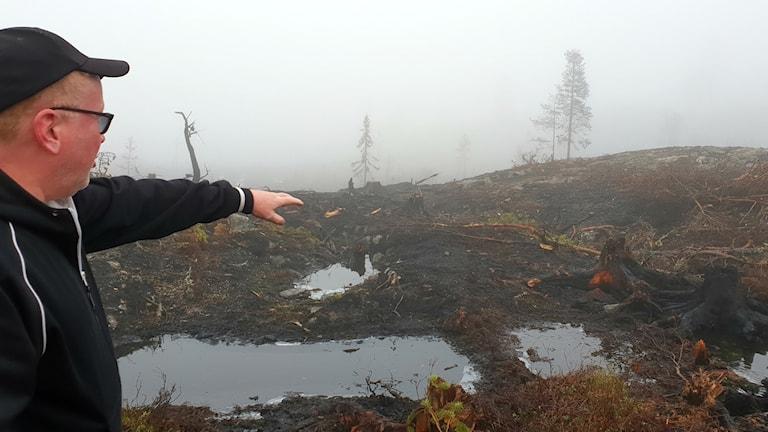 Åke Engström pekar på bränd skog. Foto: Karin Lönnå/Sveriges Radio