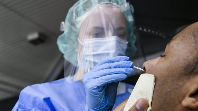 En sjuksköterska tar ett covid-19 test på en patient i näsan.