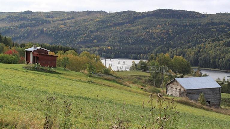 Indalsälven vid Järkvissle september 2013. Foto: Ingrid Engstedt Edfast/SR