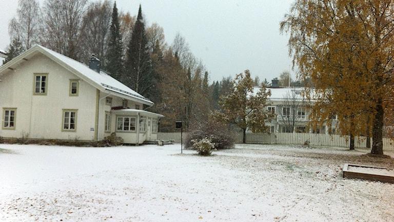 Lyssnarbild. Första snötäcket i Moliden. Foto: Rune Hellström