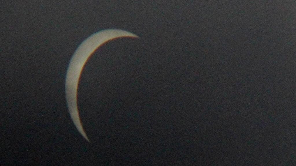 Solförmörkelsen visad genom en fågelkikare. Foto: Elvira Linderoth/SR
