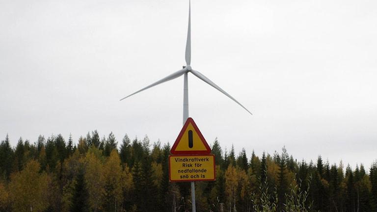 Vindkraftverk på Stamåsen i Sollefteå kommun. Foto: Stig Edfast/SR