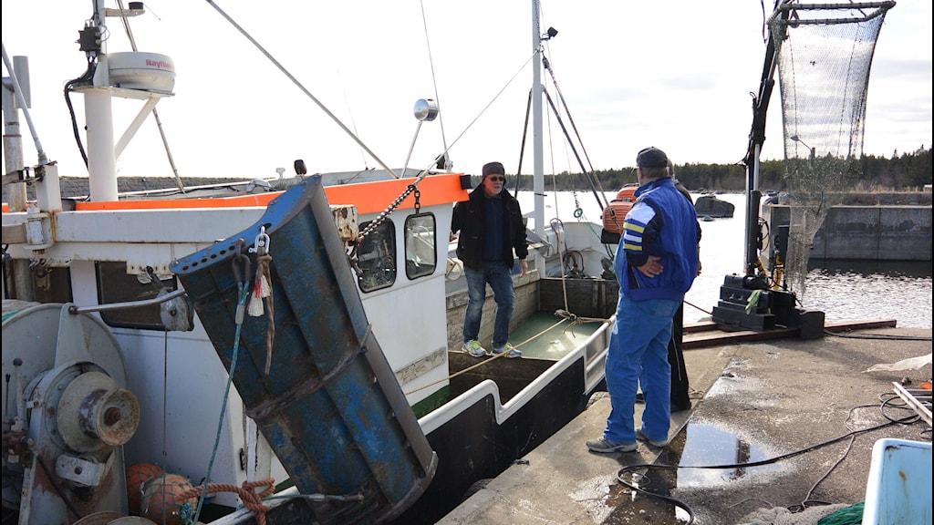 Fiskaren Bo Sillman kliver iland. Foto: Stig Edfast/SR