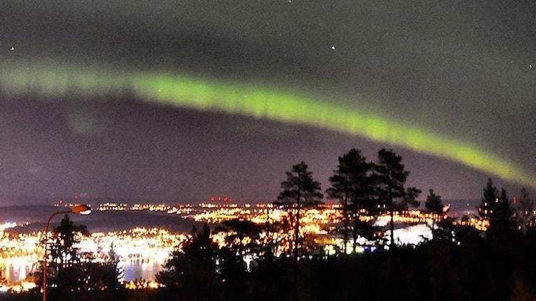 Norrsken över Sundsvall stad i form av en grön båge. Foto: Karin Mattsson/PRIVAT