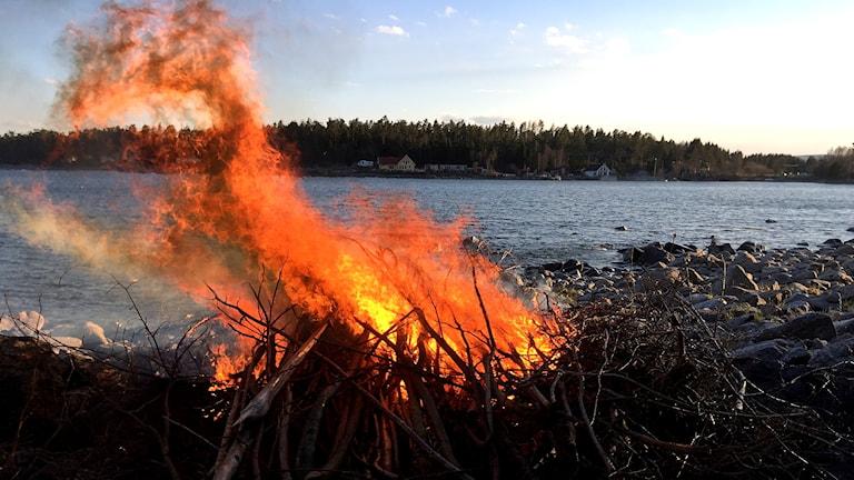 Eldningsförbud. Foto: Ann-Charlotte Carlsson/Sveriges Radio