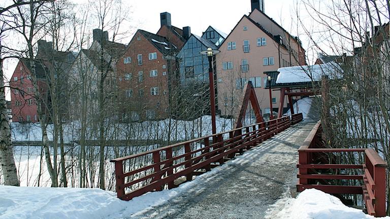 Mittuniversitetet Sundsvall