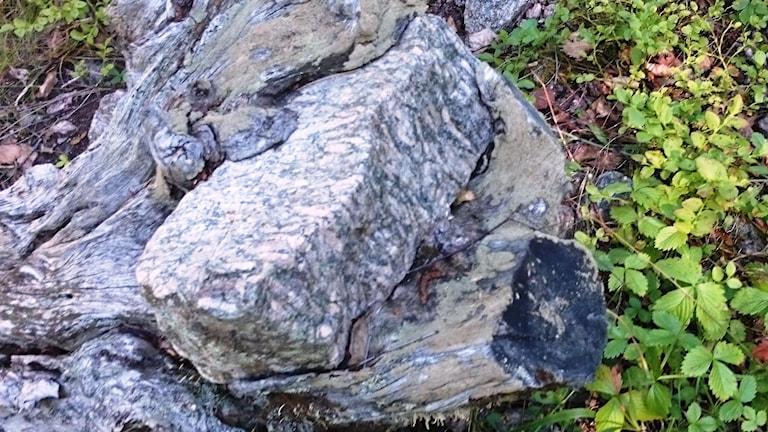 Många varianter av sten finns på ön, några till och med importerade. Foto: Carl-Johan Höiby