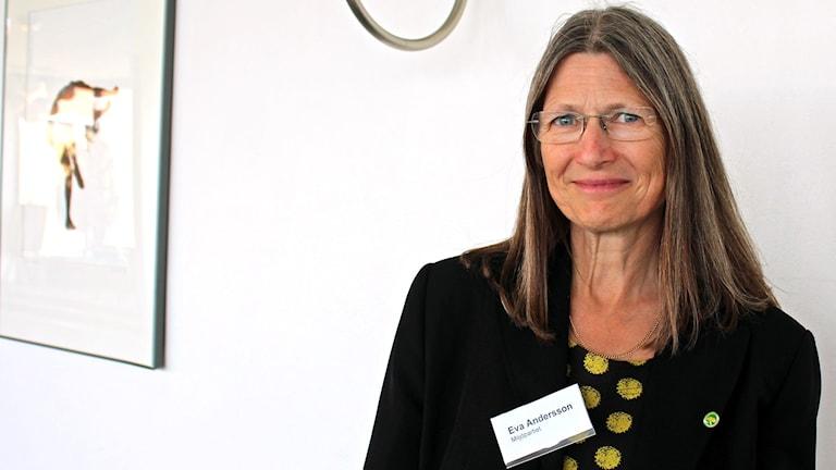 Eva Andersson, miljöpartiet.