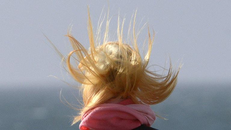 Håret mot himlen i de hårda vindbyarna. Foto: Johan Nilsson/TT