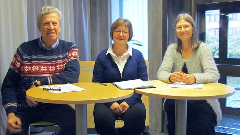 Lars-Gunnar Hultin, Elisabet Strömqvist, Eva Andersson