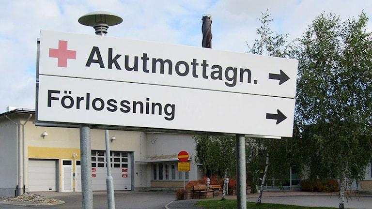 Skylt till förlossningen BB i Sollefteå. Foto: Ulla Öhman/SR