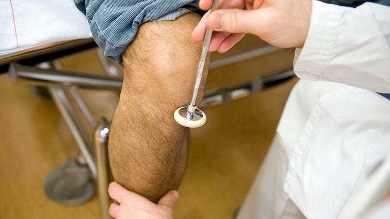 En läkare kontrollerar reflexen på en patients knä. Foto: Bertil Ericson/TT