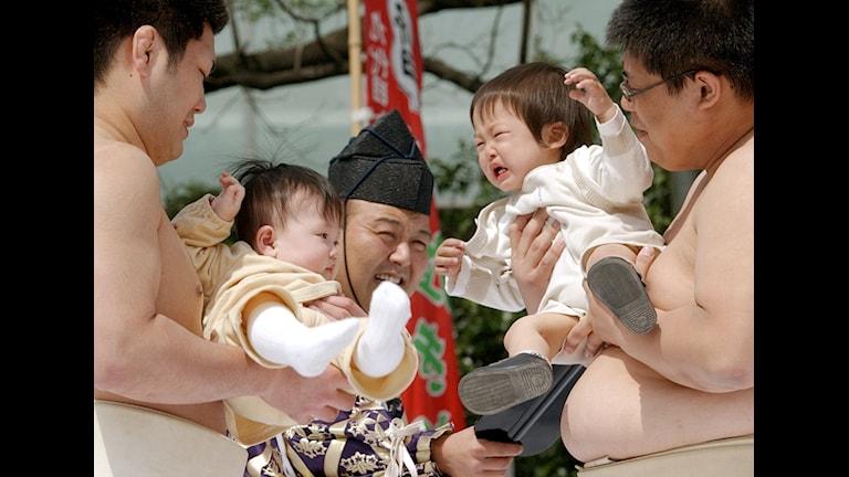 Här kanske det talas bebiska ? Foto: Koji Sasahara
