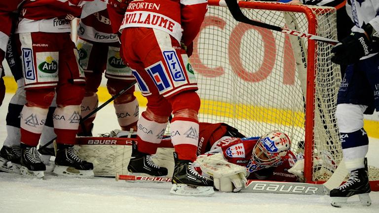Timrås målvakt Daniel Bellissimo räddar pucken i mötet mellan Timrå IK och Leksand IF. Foto: Robin Nordlund/TT