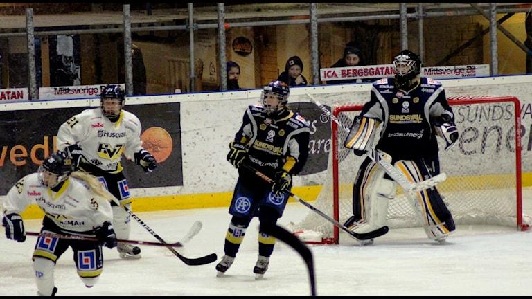 Det blev en seger och en förlust för Sundsvall Wildcats i kvalet till riksserien. Foto: Carl-Johan Höiby/SR