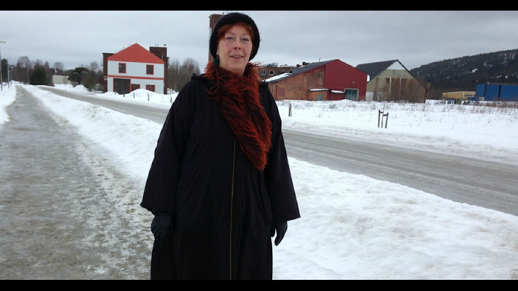 Eva Skåreus