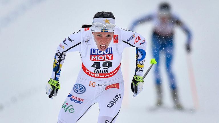 Charlotte Kalla tog guld i 10 km fristil damer vid skid-VM i Falun. Foto: Anders Wiklund/TT